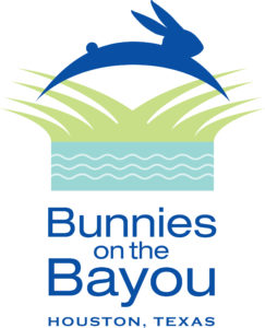 Bunnies on the Bayou